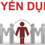 Hỗ trợ, liên kết và tuyển dụng